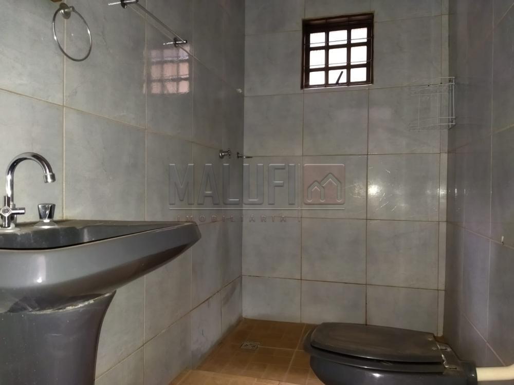 Alugar Casas / Padrão em Cajobi R$ 800,00 - Foto 12