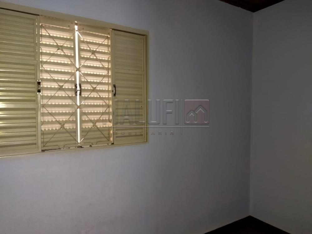 Alugar Casas / Padrão em Olímpia R$ 900,00 - Foto 6