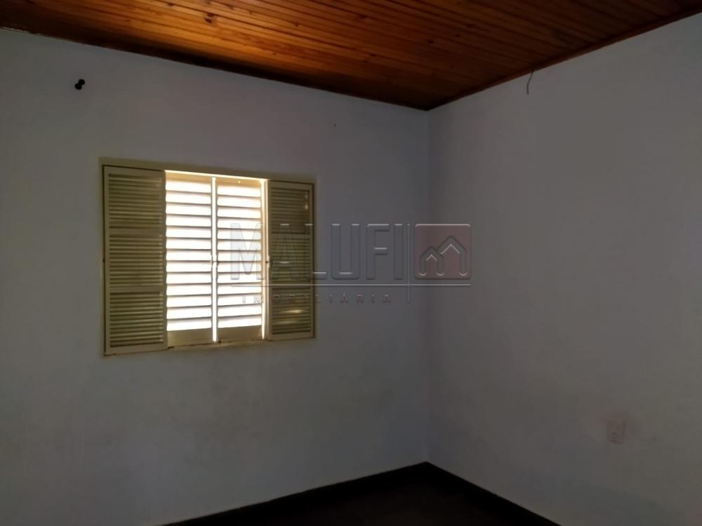 Alugar Casas / Padrão em Olímpia R$ 900,00 - Foto 4