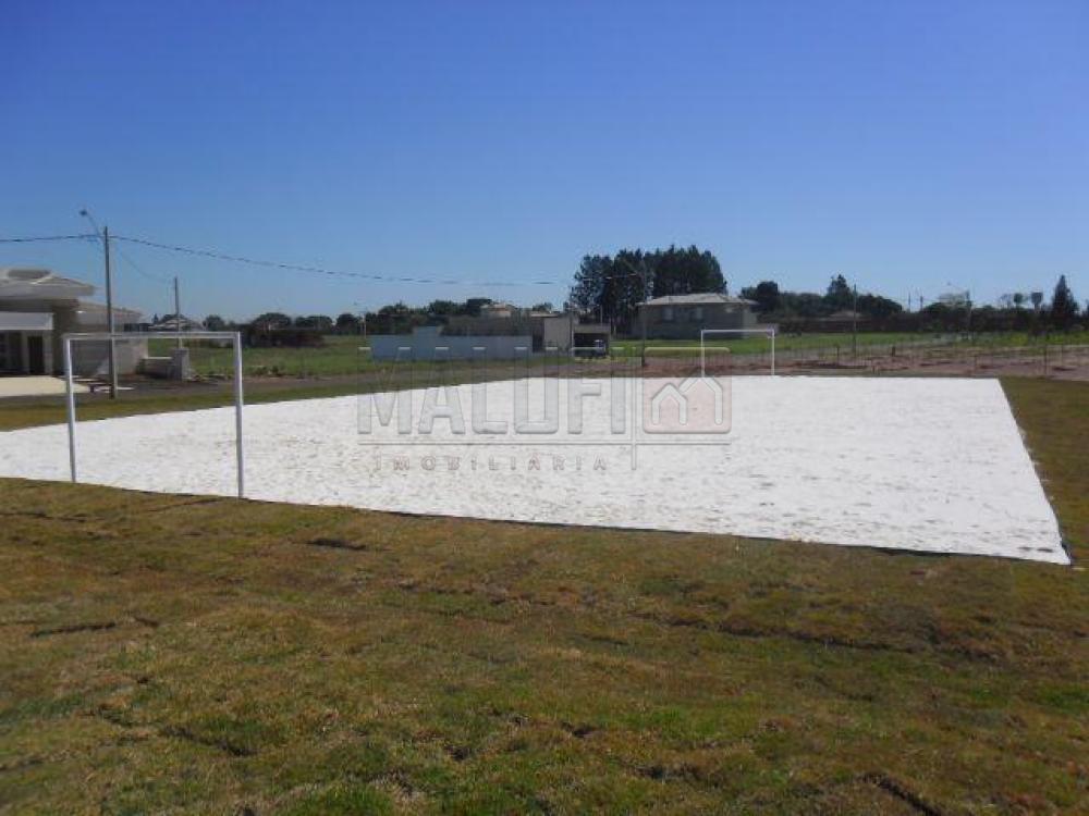 Comprar Terrenos / Condomínio em Olímpia apenas R$ 150.000,00 - Foto 4