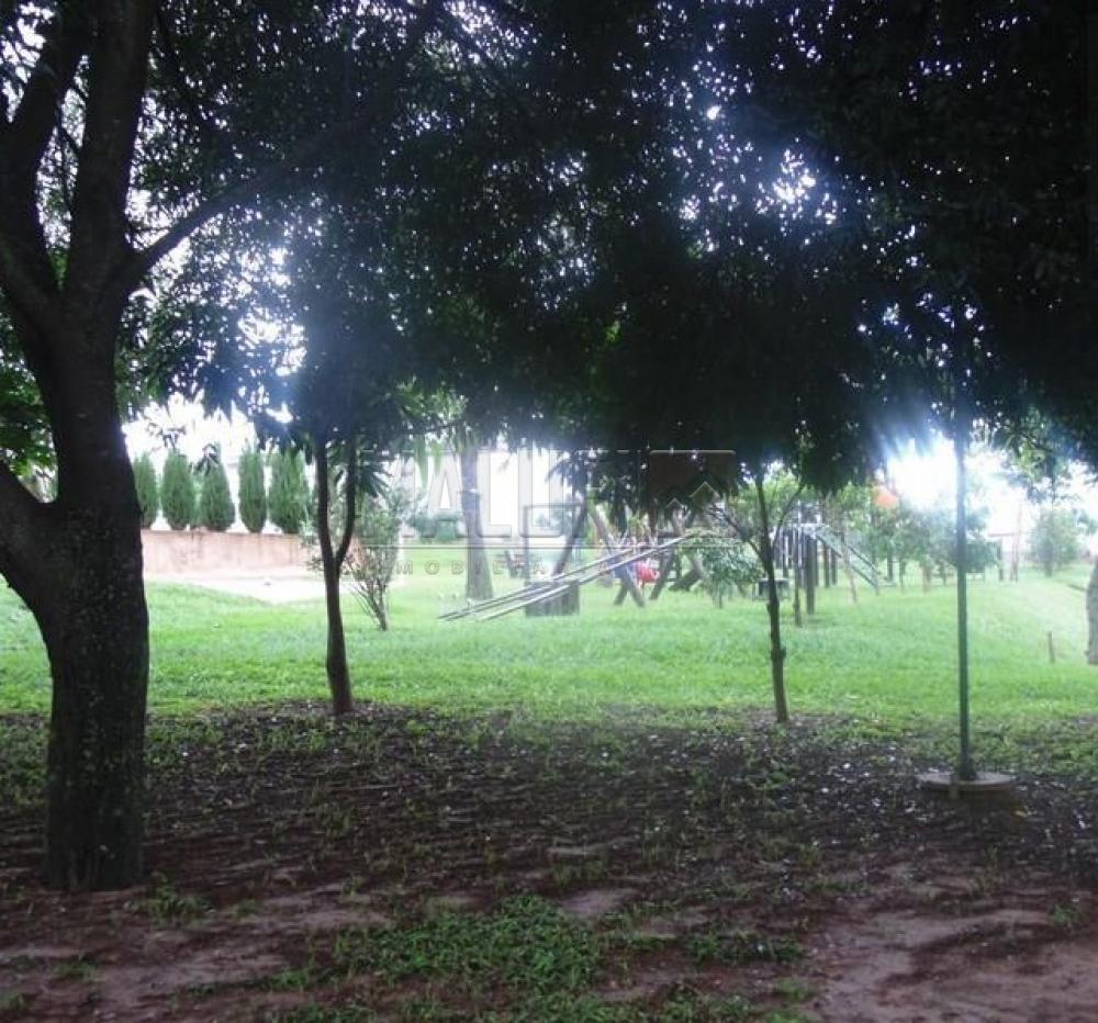 Comprar Casas / Condomínio em Olímpia apenas R$ 550.000,00 - Foto 23