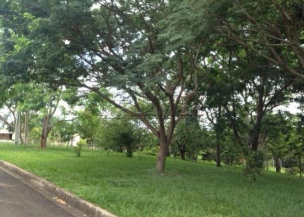 Comprar Casas / Condomínio em Olímpia apenas R$ 550.000,00 - Foto 25