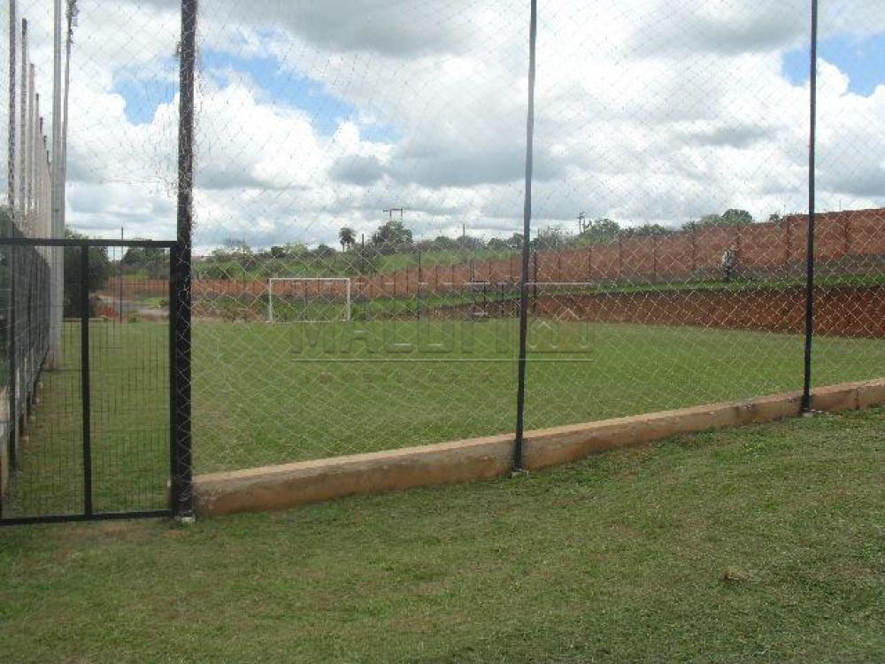 Alugar Casas / Condomínio em Olímpia apenas R$ 3.500,00 - Foto 30