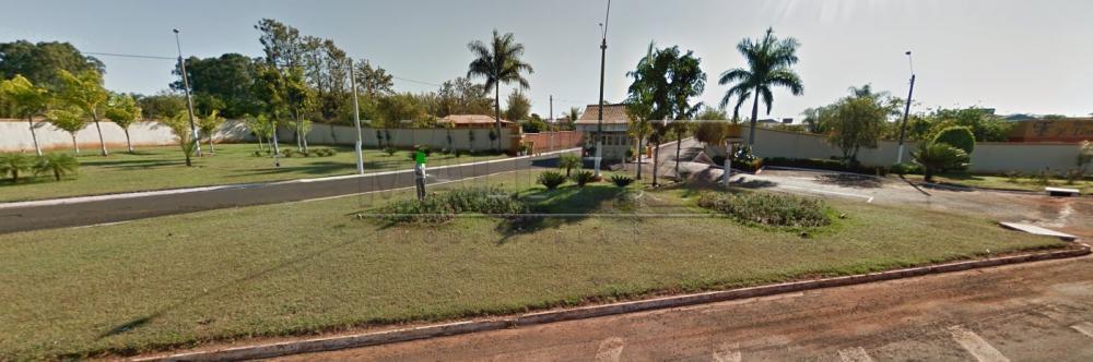Alugar Casas / Condomínio em Olímpia apenas R$ 1.930,00 - Foto 24