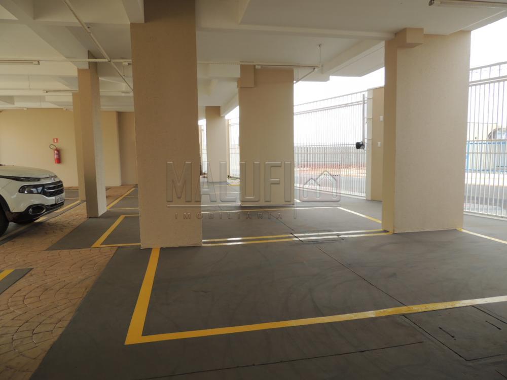 Alugar Apartamentos / Padrão em Olímpia apenas R$ 1.250,00 - Foto 19