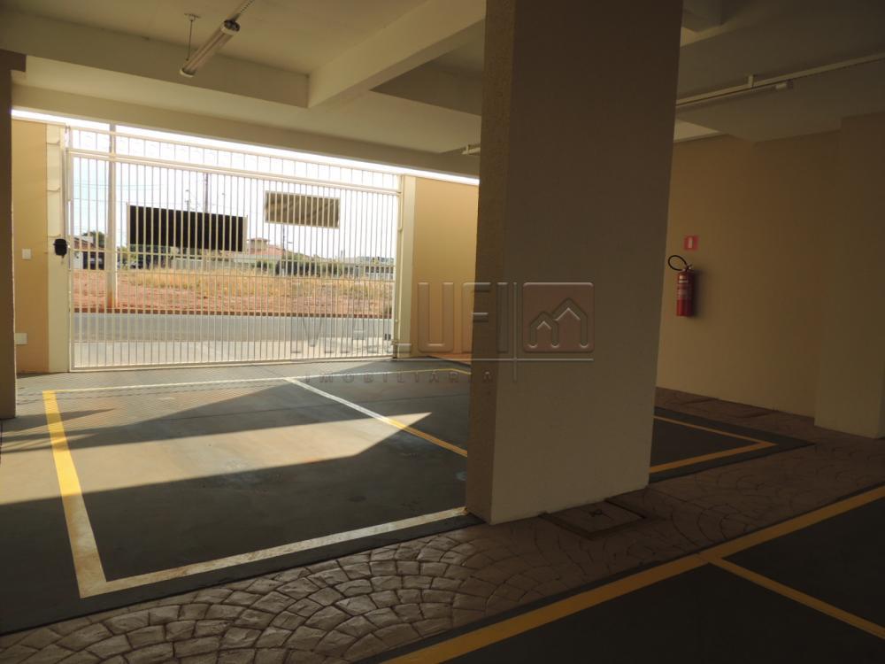 Alugar Apartamentos / Padrão em Olímpia apenas R$ 1.250,00 - Foto 20