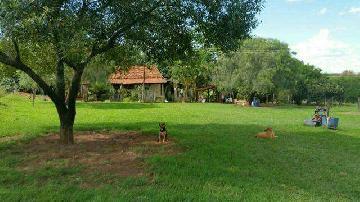 Olimpia Campo Alegre Rural Venda R$1.980.000,00 4 Dormitorios 2 Vagas Area do terreno 532400.00m2