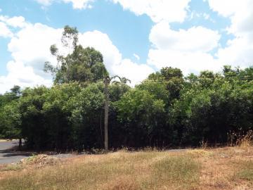 Olimpia Jardim Alvaro Brito Terreno Venda R$900.000,00  Area do terreno 1760.00m2
