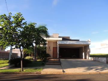 Olimpia Residencial Jardim Donnabella Casa Venda R$900.000,00 Condominio R$300,00 3 Dormitorios 2 Vagas Area do terreno 414.00m2