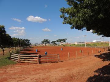 Olimpia Santa Cruz Chacara Venda R$2.150.000,00 3 Dormitorios 4 Vagas Area do terreno 20000.00m2