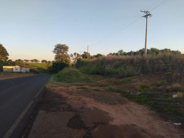 Olimpia Tamandua Rural Venda R$10.000.000,00  Area do terreno 242000.00m2
