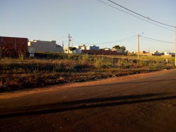 Terrenos / Padrão em Olímpia , Comprar por R$75.000,00
