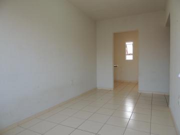 Casas / Padrão em Olímpia Alugar por R$600,00