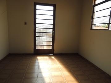 Casas / Padrão em Olímpia Alugar por R$470,00