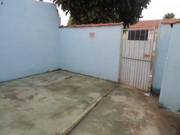 Casas / Padrão em Olimpia