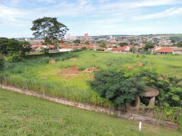 Olimpia Jardim Sao Francisco Comercial Venda R$2.300.000,00  Area do terreno 6500.00m2