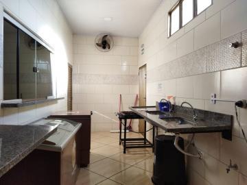 Alugar Comerciais / Barracão em Olímpia R$ 3.500,00 - Foto 6